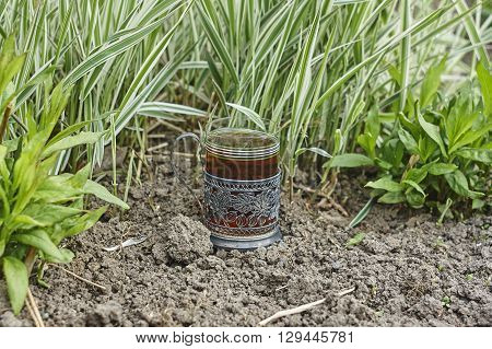 Carex communis and glass holder with glass of tea