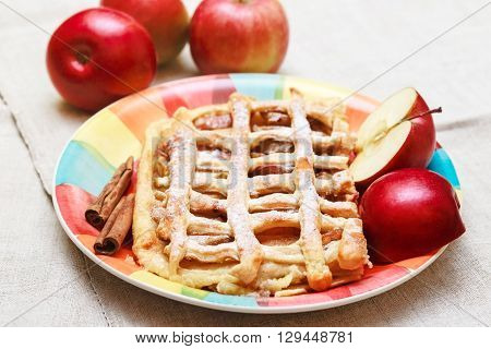Apple Pie with Pastry Grid,Sugar Powder,on the Ceramic Plate with Cinnamon and Pieces of Fresh Apple