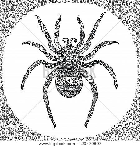 Coloring Page of Black Spider with Hand Drawn Patterns, Zentangle Vector Illustartion, Tribal Totem Insect for Adult Coloring Books or Tattoos, Isolated on Background. Monochrome Sketch.