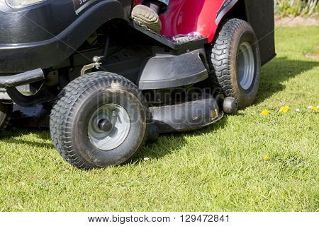 Gardner on ride on mowing the lawn green nature France