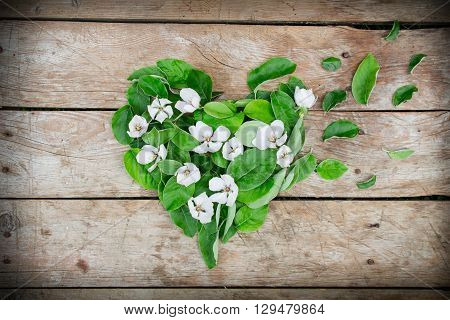 Heart shape arrangement made of quince leaves and flowers on rustic wooden table