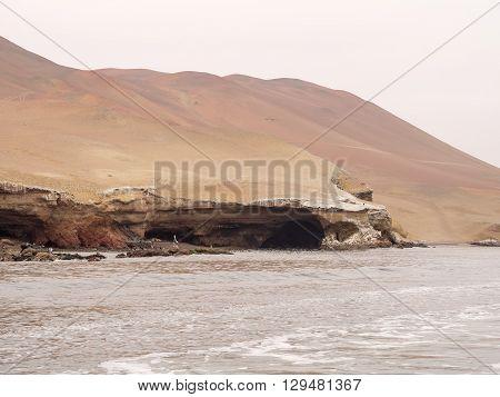 The Paracas Coast