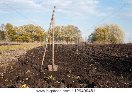 the old rake and shovel in a plowed field and dug earth in the garden