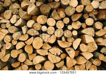 A pile of logs waiting to be transported