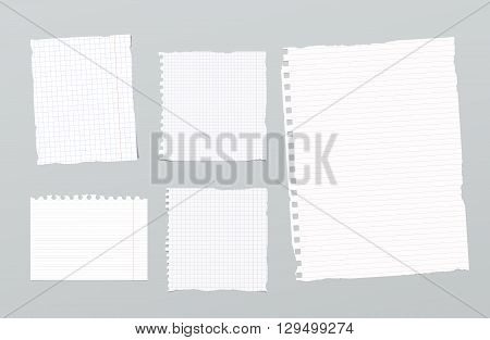 Pieces of torn white and different size lined, squared notebook paper on gray background.