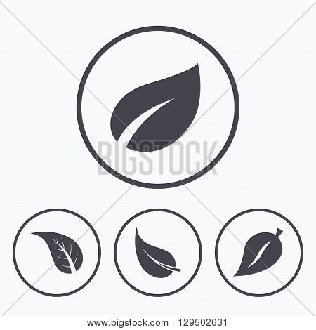 Leaf icon. Fresh natural product symbols. Tree leaves signs. Icons in circles.