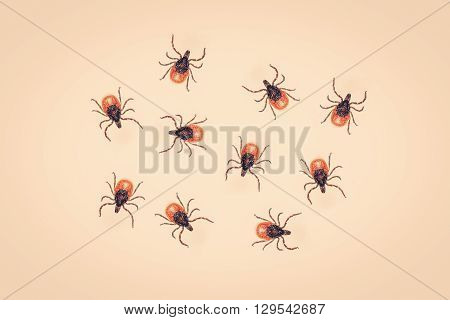 Ticks crawling on a yellow colored background
