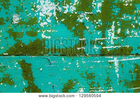 Old Woodan Wall, Shabby Green Paint As Background