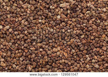 Organic True or green cardamom (Elettaria cardamomum) Seeds. Macro close up background texture. Top view.