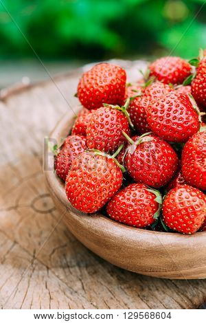 Strawberries. Ripe Strawberry In Fruit Garden, Old Wooden Bowl Filled With Fresh Ripe Red Strawberries