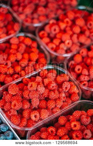 Fresh Red Berries Raspberries At Market In Trays, Containers.
