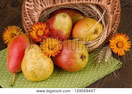 Ripe pears in a basket on green napkin. Fall still life.
