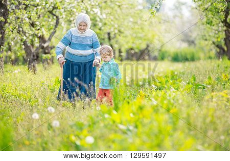 Senior woman supported by great grandson walking in blossoming orchard