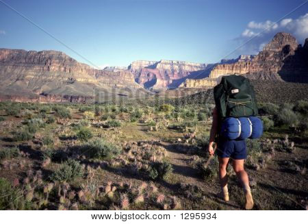 Hiking Grand Canyon
