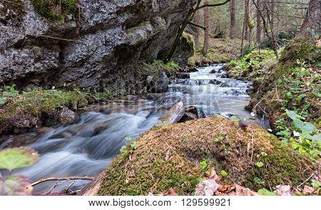 Stream in Blatnicka valley in forest - Slovakia
