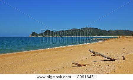 Beautiful beach in the Abel Tasman National Park. Waiharakeke Bay. Travel background.
