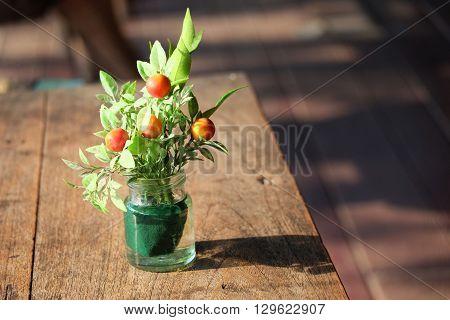 beautful flowerpot on the wood floor in the coffee shop