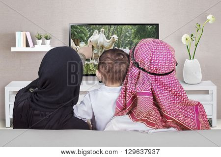 Arabian family sitting on the sofa while watching television together in the living room