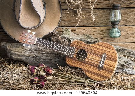 Still life photography with ukulele and dry roses with american west rodeo brown felt cowboy hat in vintage ranch barn background