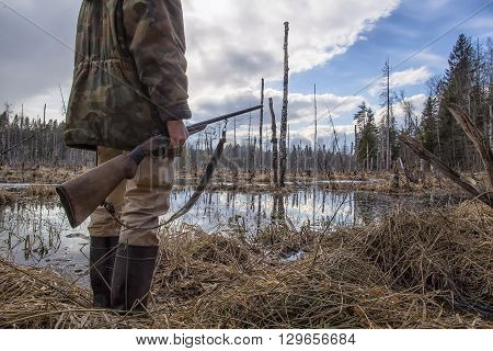 Hunter standing in the swamp in the forest and holding in his hand an old hunting rifle
