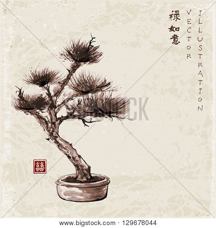 Bonsai pine tree hand drawn in traditional Japanese painting style sumi-e on vintage background. Contains signs luck, double luck, dreams come true, well-being