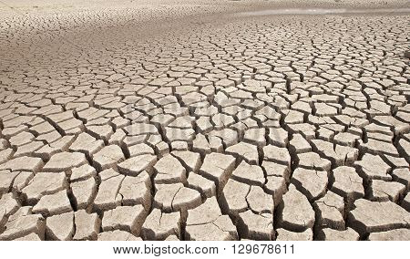 The Cracked earth and barren pattern ground