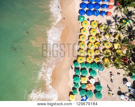 Top View of a Beach in Bahia, Brazil