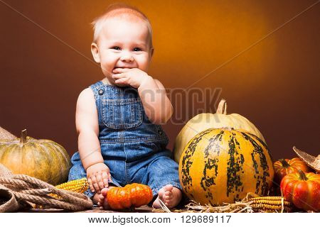 Cute baby posing on the background of pumpkins. Thanksgiving greetings
