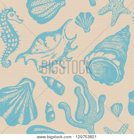 Seamless pattern with hand drawn seashells. Marine background. Vector vintage texture with seashells coral sea horse starfish