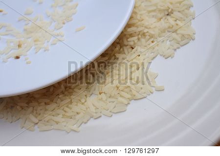 White grain rice on a white plate.