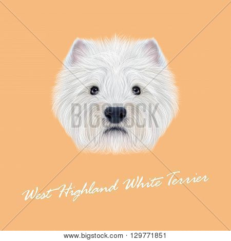 Vector Illustrated Portrait of West Highland White Terrier. Cute fluffy white face of domestic dog on peach background.