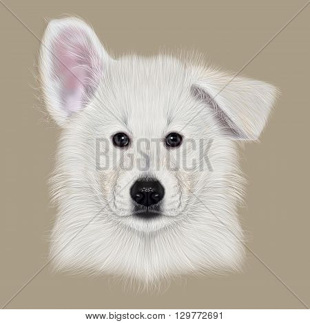 Illustrated Portrait of White Swiss Shepherd dog. Cute white fluffy face of domestic puppy on beige background.