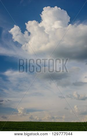 clouds and field spring landscape rural evening