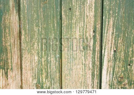 Close up of weathered and distressed wood.