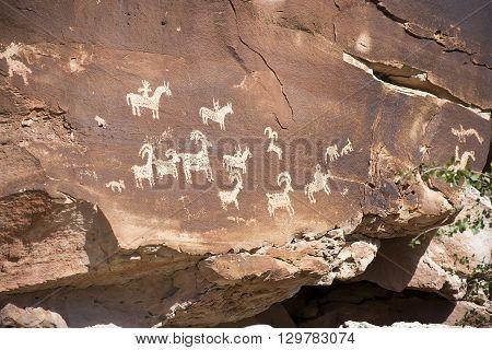 Ute Petroglyphs in Arches National Park, Utah, USA