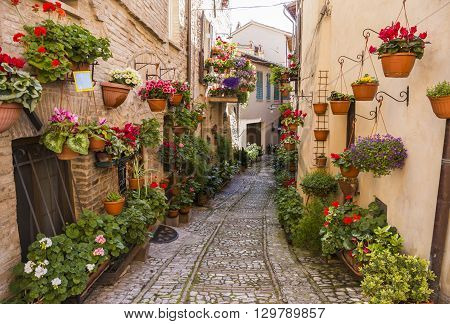 Spello. Medieval town in central Italy in Umbria