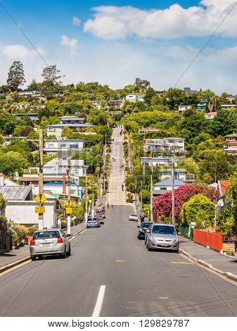 Dunedin New Zealand - November 16 2014: Baldwin Street world's steepest in Dunedin Otago New Zealand. Steepest gradient 1 in 2.86.
