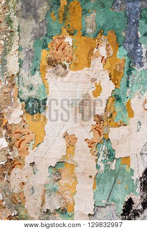 Detail cracked plaster - fine cracks - compound fissure - grunge background