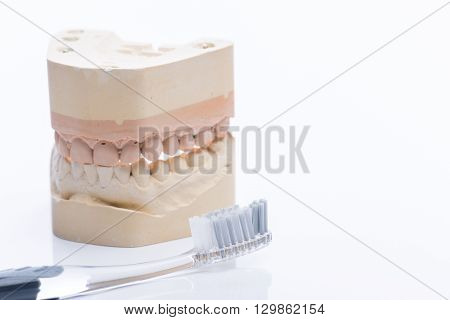 Teeth Molds With Toothbrush On A Bright White Table