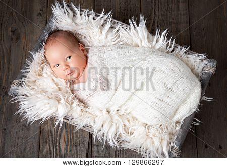 Beautiful newborn baby inside a wicker basket