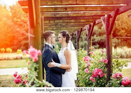 Newlyweds In Park Rosarium Next To Beautiful Pink Roses