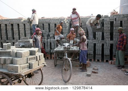 SARBERIA,INDIA, JANUARY 16: Brick field workers carrying complete finish brick from the kiln, and loaded it onto a bicycle rickshaw on January 16, 2009 in Sarberia, West Bengal, India.