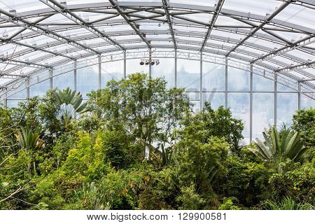 ZURICH SWITZERLAND - JUNE 13 2015: Interior view of the Masoala hall (built 2003) in the Zoo Zurich on June 13 2015. The Zoo was opened in 1929 and as of 2004 has 2200 specimens of 300 species.