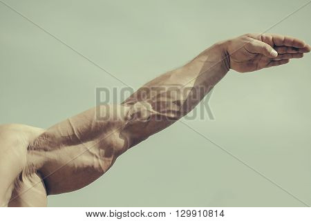 Strong Arm Of Male Bodybuilder