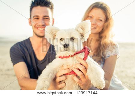 Smiling couple with dog portrait on the beach. concept about pets and dogs
