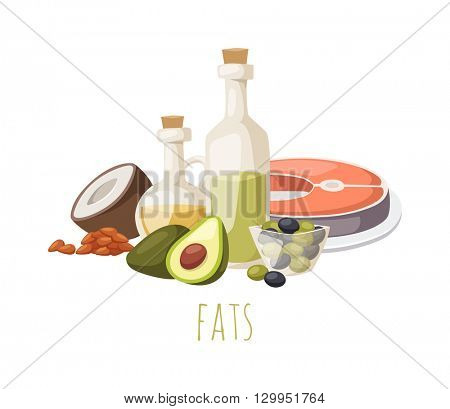 Good fats food vector illustration.