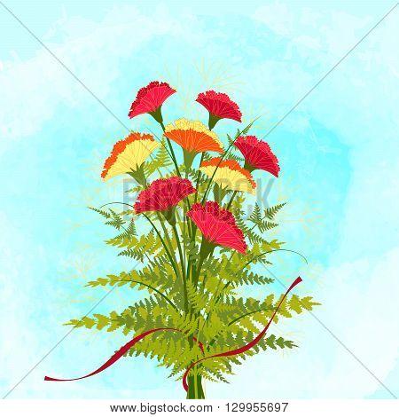 Springtime Colorful Carnation Flower on Blue Background