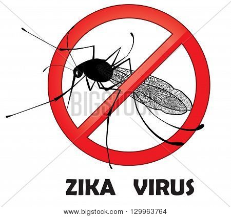 No zika mosquito gnat insect vector sign. Carry many disease such as dengue fever zika virus yellow fever chikungunya disease filariasis malaria enchaphalitits.