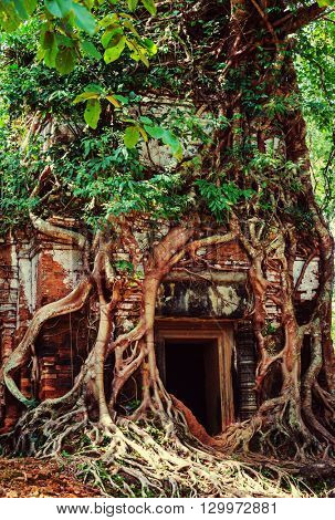 Ancient ruins of Angkor, Cambodia