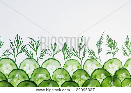 Cucumber slices. Green dill. Pattern. Frame with the copy space. Food background. Macro. Texture.